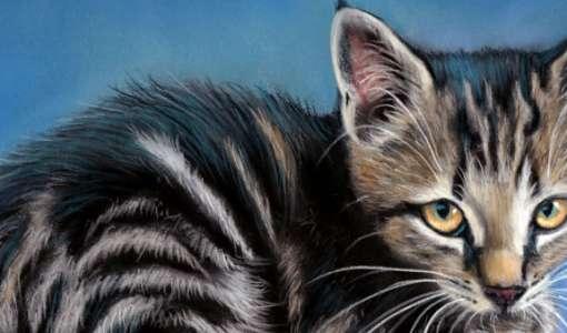 Tiere in Pastell - faszinierend realistisch